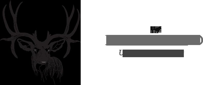 Bowerbird Bright